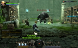 Dragon Nest - Gameplay Screenshot #5