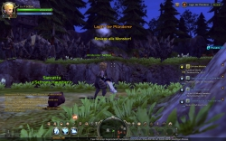 Dragon Nest - Gameplay Screenshot #9